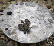 """Old nickel """"ORZEŁ"""" pin"""